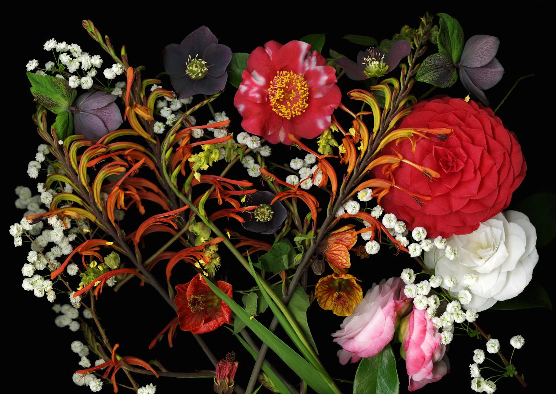 Brash Bouquet