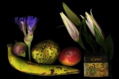 Plantain Old Silk