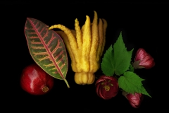 Pomegranate Buddah Hand