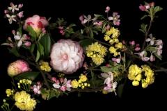 Spring Reprise